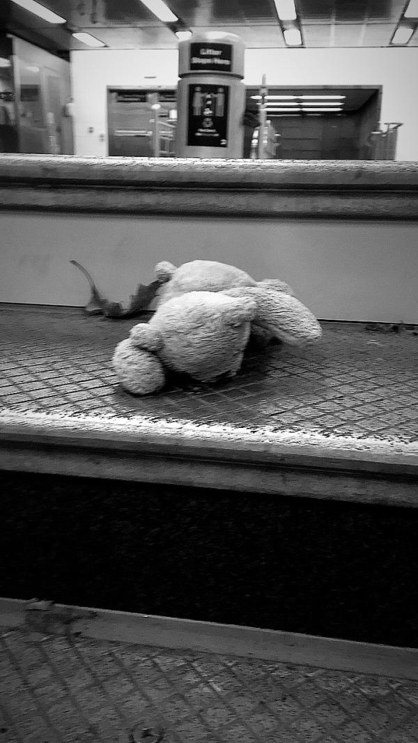 PoorPooh:shot by Susan Kirschbaum.jpg